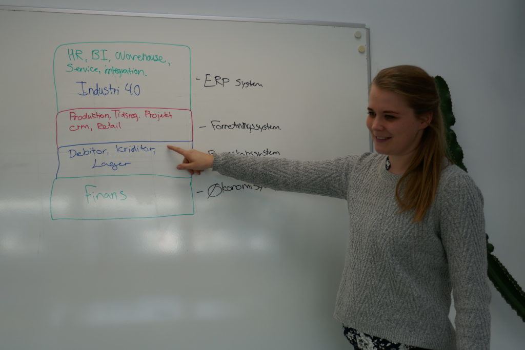 ERP kurser
